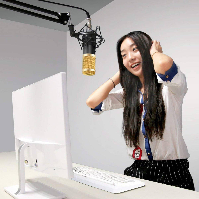 Micrófono Condensador con Brazo soporte Antipop BM800